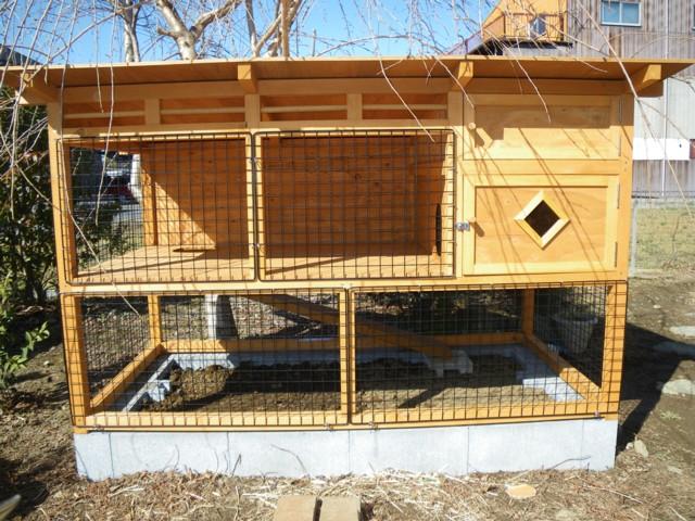 ウサギ 小屋